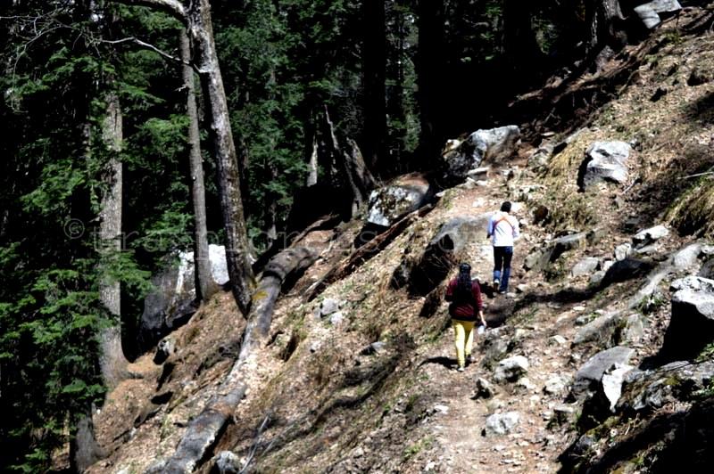 Into the Wilderness at Hampta Pass Trek (Manali)